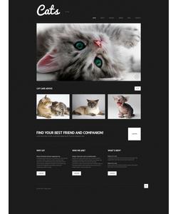 WordPress šablona na téma Zvířata č. 50613