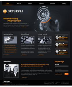Flash CMS šablona na téma Bezpečnost č. 40620