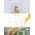 WordPress šablona na téma Café a restaurace č. 55725
