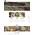 Moto CMS 3 šablona na téma Kasino online č. 59277