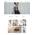 OpenCart e-shop šablona na téma Móda č. 57564